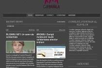 Consiliul Judetean al Elevilor Braila prezent pe internet
