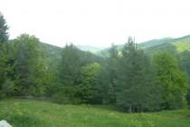 Proilavia va invita în minunata zona Jitia-Vintileasca din judetul Vrancea