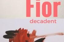 Alexandru Halupa publica un nou volum de poezie - Fior decadent