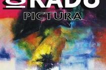 """Muzeul Brailei """"Carol I"""" - Intâlnire cu pictorul Ion Radu"""