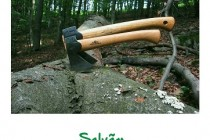 Apel către braileni pentru salvarea Pădurii Stejarul