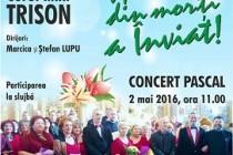 Concert pascal susținut de corul Trison la Catedrala din Brăila