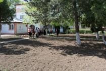 Reabilitarea spatiului verde si crearea unui loc de joaca la Gradinita Narcisa