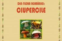 """Foto-expoziția """"Din flora României: Ciupercile"""" la Muzeul Brăilei"""
