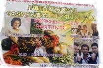 Sărbătoarea Gospodarului Siliștean 24 septembrie