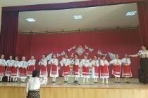 """""""Cântece vechi, voci tinere"""" - concurs interjudețean de folclor la Școala Gimnazială Viziru"""