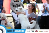 Semimaraton Galați a VI-a ediție