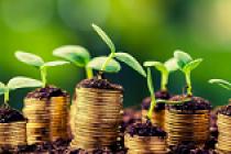 APIA a dat startul plăților în avans pentru Campania 2020