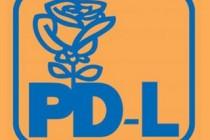 PDL vrea moţiune de cenzură dar speră la sprijinul liberalilor