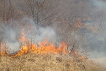 Atenţionare de călătorie în Muntenegru – Temperaturi ridicate și risc de incendii de vegetație