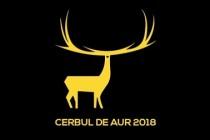 Festivalul Cerbul de Aur: 18 concurenți din 15 țări au fost selecționati de juriu pentru a urca pe scenă