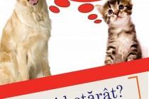 Campanie de sterilizare a câinilor organizata în Braila în perioada 24-25 aprilie 2015