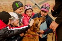 Proiectul VIER PFOTEN - Copiii din Chișinău învață să protejeze animalele