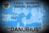 Danubius | Primul concurs international online
