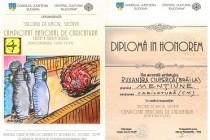 Doi brăileni premiați pentru caricatură