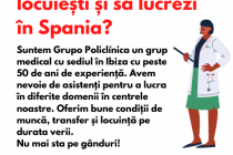 Job | Asistenti in Spania