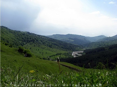 zona Jitia-Vintileasca, Vrancea