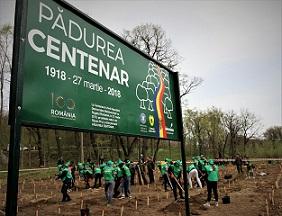 plantat pomi Padurea Centenar