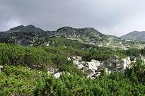 proilavia pe muntii macinului