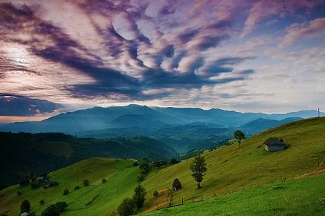 România salbatica